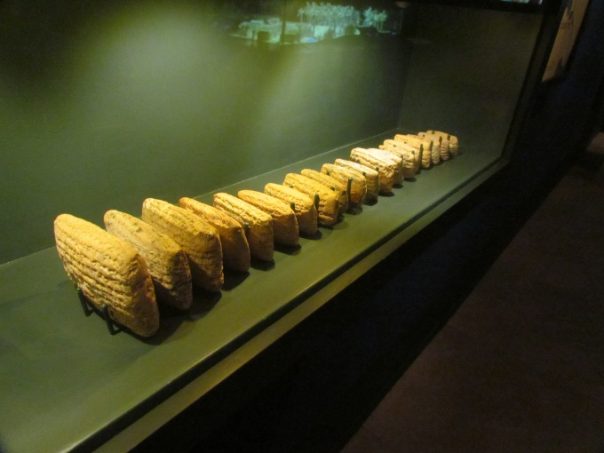 Some of the Al Yahuda tablets at the Bible Lands Museum, Jerusalem.